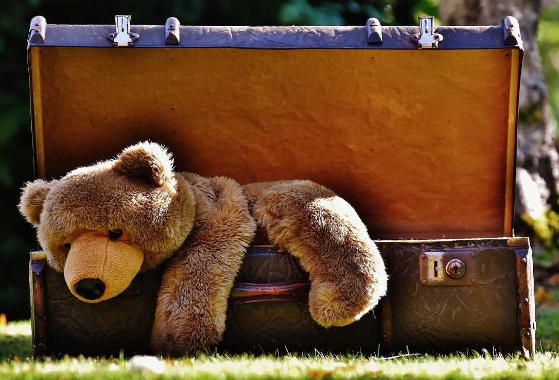 suitcase-with-bear